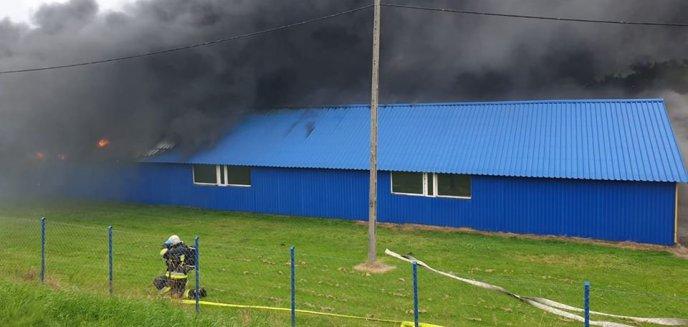 Artykuł: Pożar hali w Bartągu pod Olsztynem. Zamknięto główną ulicę! [ZDJĘCIA, WIDEO]