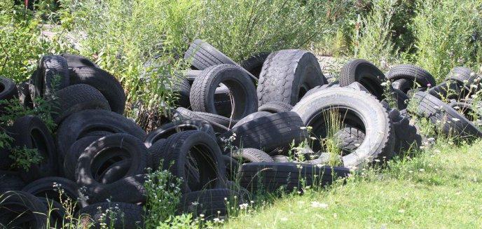 Artykuł: Przy ul. Bublewicza znaleziono składowisko opon samochodowych [ZDJĘCIA] [AKTUALIZACJA]