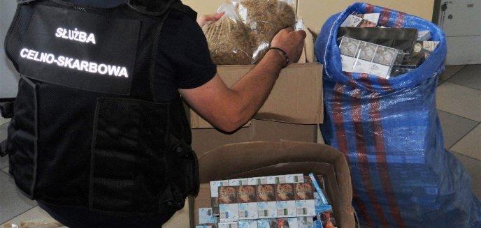 Artykuł: Olsztyńskie służby walczą z przemytnikami. Papierosy bez akcyzy znaleziono w aucie i na targu [ZDJĘCIA]