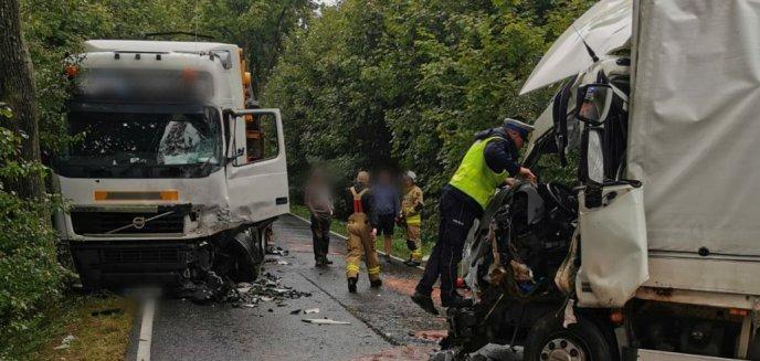 Artykuł: Wypadek pod Olsztynem. Zderzyły się dwie ciężarówki [ZDJĘCIA]