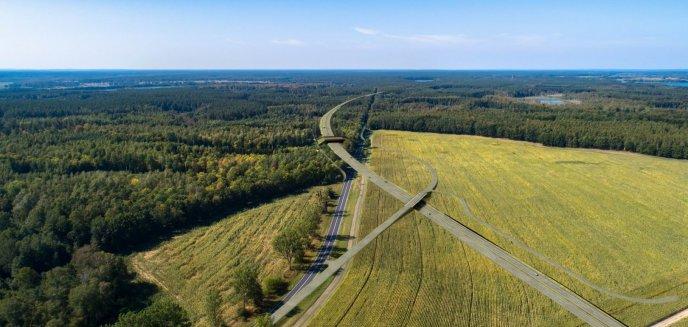 Artykuł: Wybrano wariant kontrowersyjnej drogi S16 [MAPA]