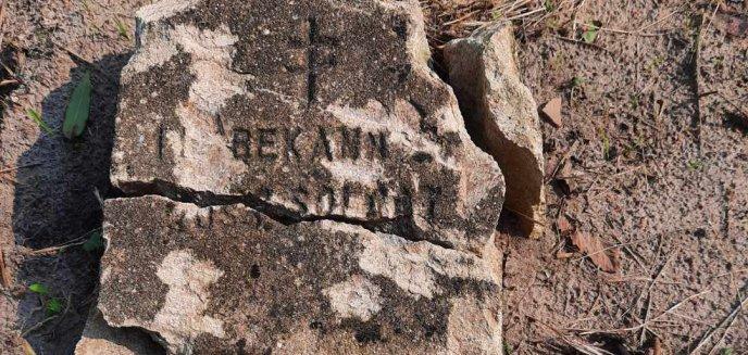 Artykuł: Gmina Purda. IPN dokonał ekshumacji szczątków żołnierza rosyjskiego. Pracownicy mieli zniszczyć jego grób