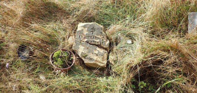 Artykuł: Gmina Purda. To nie IPN zniszczył grób rosyjskiego żołnierza. Czy ktoś go naprawi?