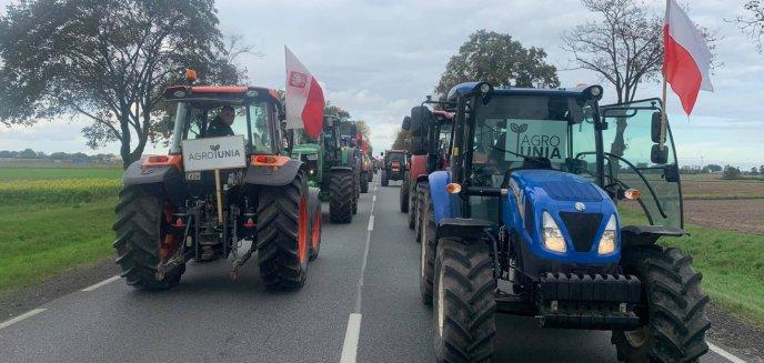 Artykuł: ''Piątka dla zwierząt''. Protest rolników w kilku miejscowościach Warmii i Mazur