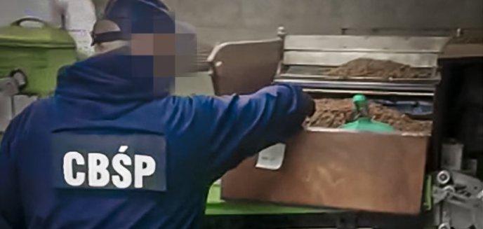 Artykuł: Olsztyńskie służby zlikwidowały nielegalną fabrykę tytoniu w Słupsku. Skarb Państwa mógł stracić 24 mln zł [ZDJĘCIA, WIDEO]