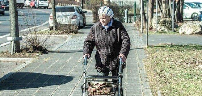 Artykuł: 96-latka przeszła piechotą 10 km do zegarmistrza. Nie miała już siły wrócić do domu