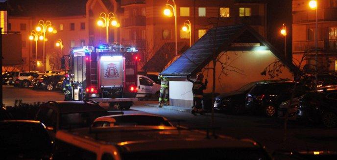 Artykuł: Strażacy uratowali kotka na osiedlu Generałów. Ile podobnych interwencji jest w Olsztynie w ciągu roku?