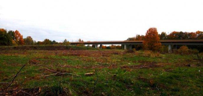 Wytną 30 hektarów lasów pod budowę drogi S16