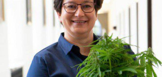 Artykuł: [WYWIAD] Monika Falej: ''Marihuana medyczna może przynieść wiele dobrego''