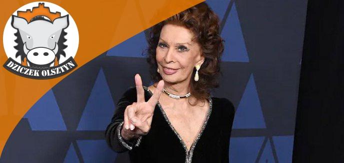 Artykuł: Legenda filmu, Sophia Loren, zagra u Skolimowskiego. Produkcja będzie kręcona na Warmii i Mazurach