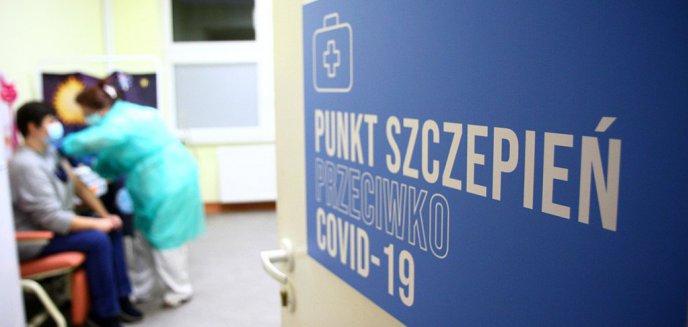 Artykuł: Polacy podzieleni wobec szczepionki na Covid-19. Niemal połowa chce się zaszczepić