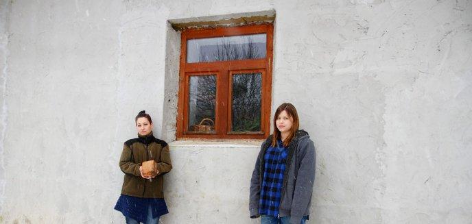 Artykuł: Orzechowo pod Dobrym Miastem. Czy to myśliwi chcą zastraszyć kobietę? Wybito cegłą szybę w jej domu