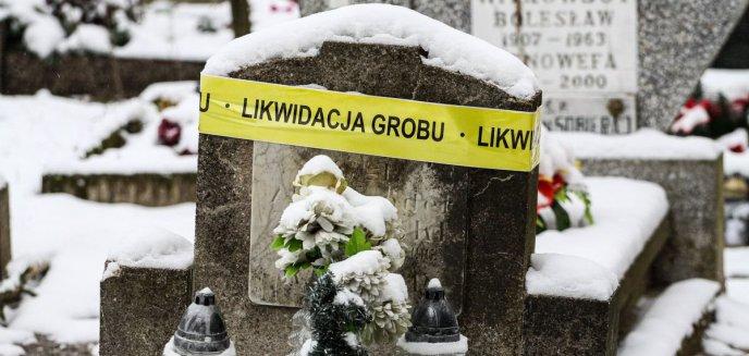 Artykuł: Kilkadziesiąt grobów w Olsztynie i Dywitach do likwidacji [ZDJĘCIA]