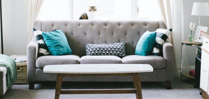Artykuł: Chcesz kupić nowe meble? Skorzystaj z licznych promocji!