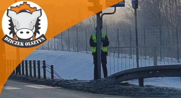 Artykuł: ''Pół policjant, pół sygnalizator''. Zdjęcie spod Olsztyna funkcjonariusza z drogówki robi furorę w Internecie