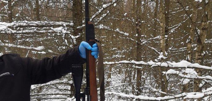 Artykuł: Obława w lesie pod Działdowem. Padły strzały [ZDJĘCIA]