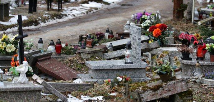 Artykuł: Zdewastowano dziecięce groby na cmentarzu przy ul. Poprzecznej. Policjanci przeglądają monitoring [ZDJĘCIA]