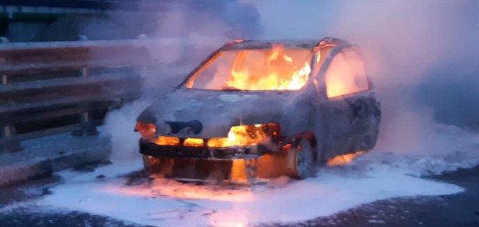 Pożar auta na drodze serwisowej pod Olsztynem. Pojazd doszczętnie spłonął [ZDJĘCIA]