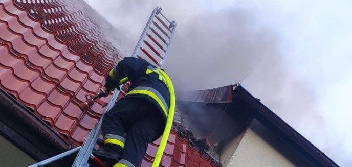 Artykuł: Pożar budynku w Olsztynku. Policjanci ratowali jego mieszkańców [ZDJĘCIA]