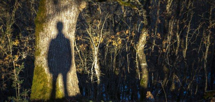 Artykuł: Niepokojące zgłoszenie od naszej Czytelniczki: ''W Lesie Gronickim grasuje zboczeniec''