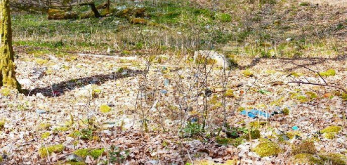 Artykuł: Leśnicy zlikwidują dzikie wysypisko śmieci pod Olsztynem. Odpady mają... ponad 50 lat!