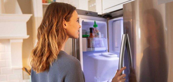 Artykuł: Pytania, które należy zadać przed zakupem lodówki