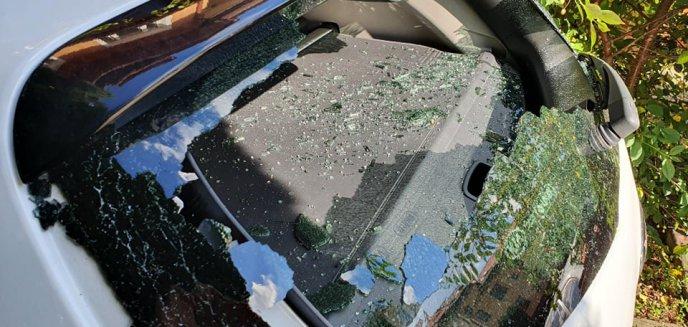 Artykuł: Wandale próbowali się włamać do domu na os. Generałów. Zniszczyli też samochód [ZDJĘCIA]