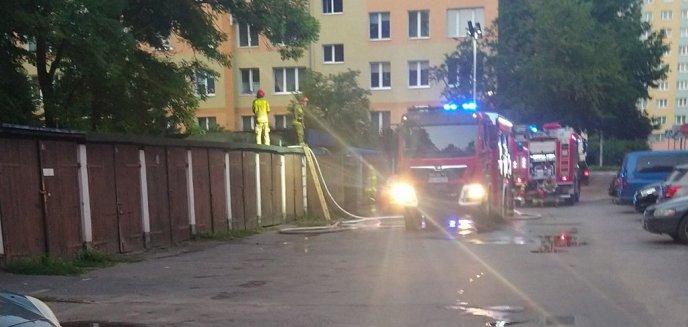Artykuł: Ktoś podpalił wiatę śmietnikową przy ul. Kołobrzeskiej w Olsztynie. Czytelnik: ''To nie pierwszy raz się wydarzyło'' [ZDJĘCIA]