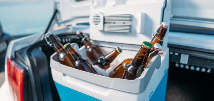 Mini lodówka na wyprawy samochodowe - czym kierować się przy wyborze?