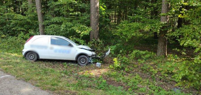 Artykuł: Firmowym autem uderzył w drzewo pod Olsztynem