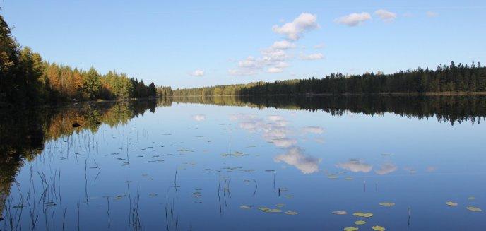 Artykuł: W jeziorze pod Olsztynkiem znaleziono zwłoki 37-letniego Niemca z ranami kłutymi szyi