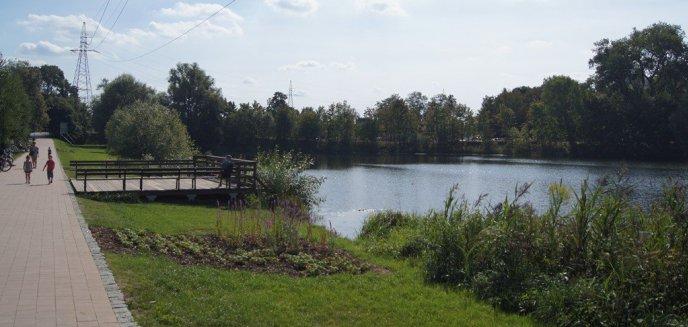 Z jezior Długiego i Kortowskiego usuwają groźną dla środowiska roślinę
