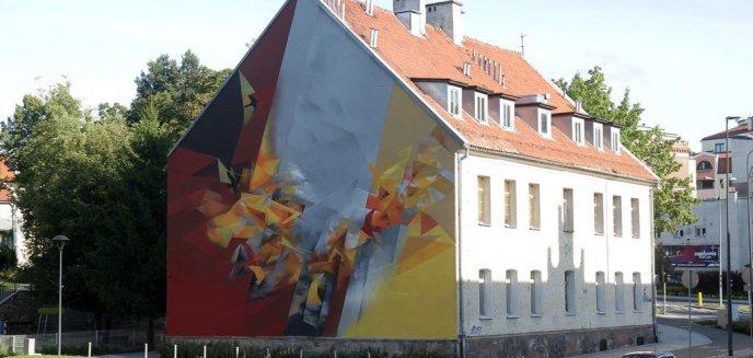 Artykuł: Na ścianie przedszkola miejskiego przy ul. Pieniężnego powstał kolorowy mural [ZDJĘCIA]