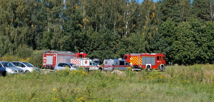 24-latek ze Zduńskiej Woli znaleziony martwy na terenie leśnym w pobliżu ulicy Witosa w Olsztynie [WIDEO]