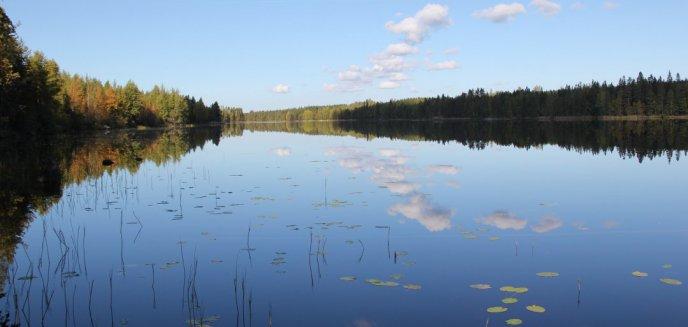 Wracamy do sprawy zwłok 37-latka wyłowionych z jeziora pod Olsztynkiem. Co ustaliła prokuratura?