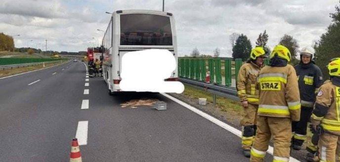 Artykuł: Pożar  autobusu na DK 16 pod Olsztynem [ZDJĘCIA]