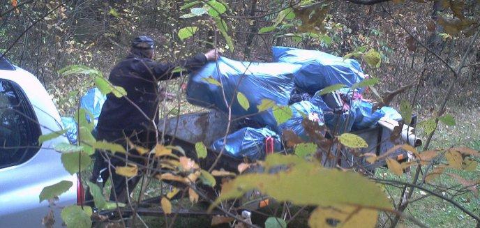 Artykuł: Mężczyzna wyrzucił odpady po remoncie do lasu. Wpadł przez fotopułapkę [ZDJĘCIA]