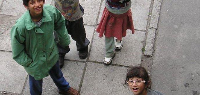Artykuł: Prawo jazdy dla Romów za darmo