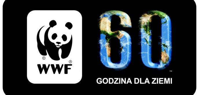 Artykuł: Godzina dla Ziemi w Olsztynie