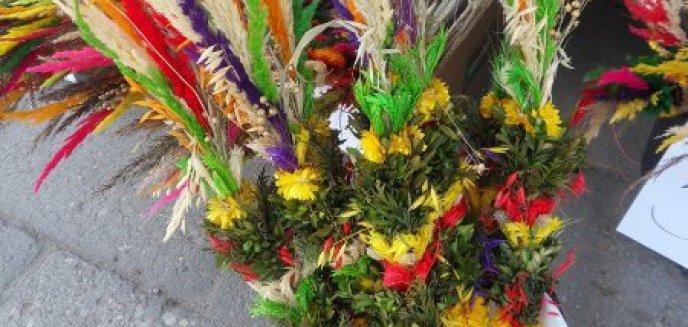 Artykuł: Świąteczne kolory Olsztyna
