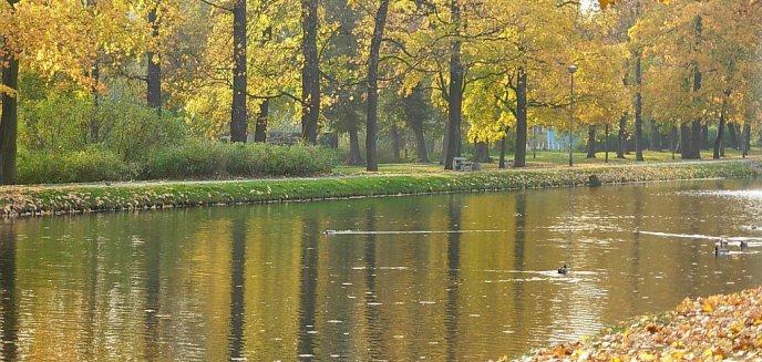 Artykuł: Jesiennie - nie znaczy nudno
