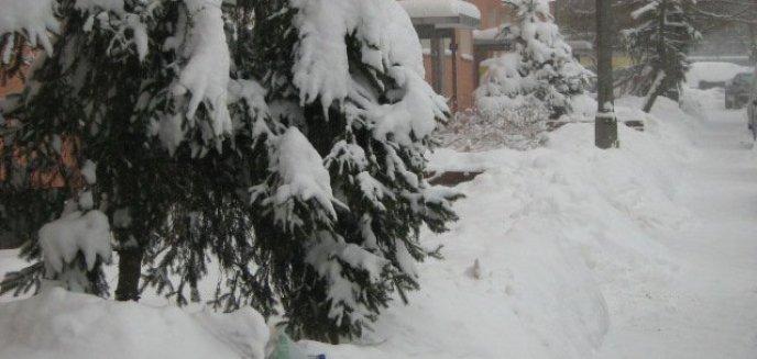 Artykuł: Rekordowa ilość śniegu na Warmii