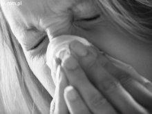 Kolejne przypadki świńskiej grypy w regionie