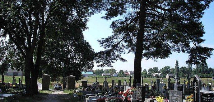 Artykuł: Znani i lubiani - gotowi do kwesty na cmentarzach