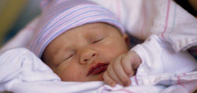 Artykuł: Stanowisko przyszłych rodziców w sprawie Arki