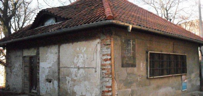 Artykuł: Sentymentalna podróż, czyli o losie cmentarza żydowskiego w Olsztynie.